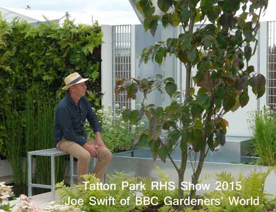 Joe Swift at Tatton Park RHS Show 2015