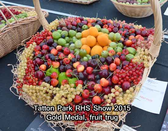 Gold Medal Fruit Trug at Tatton Park RHS Show 2015